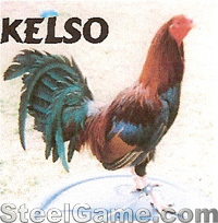 gamecock_advertisingkelso